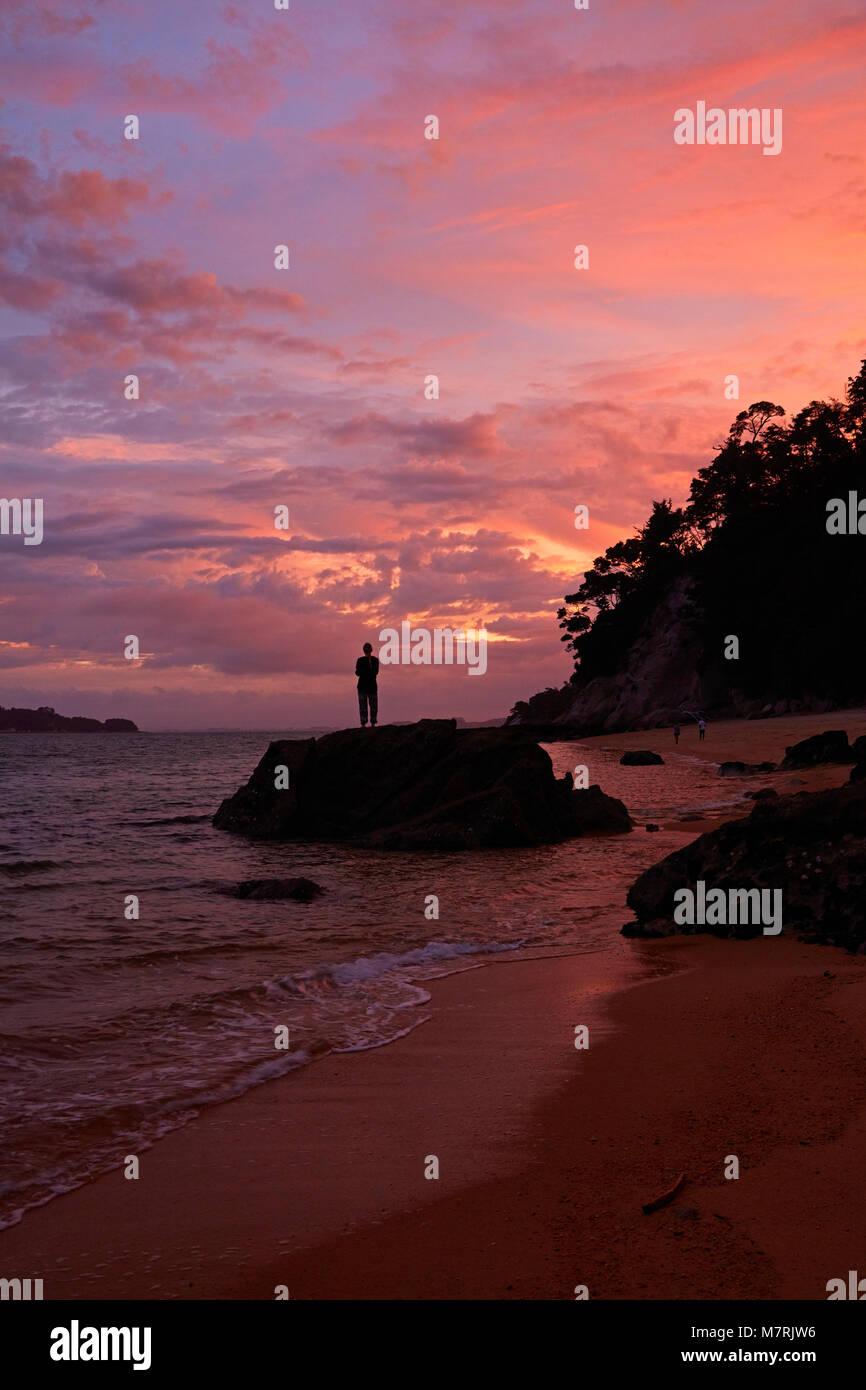 Personne sur la roche à l'Observation plage au coucher du soleil, parc national Abel Tasman, région Photo Stock