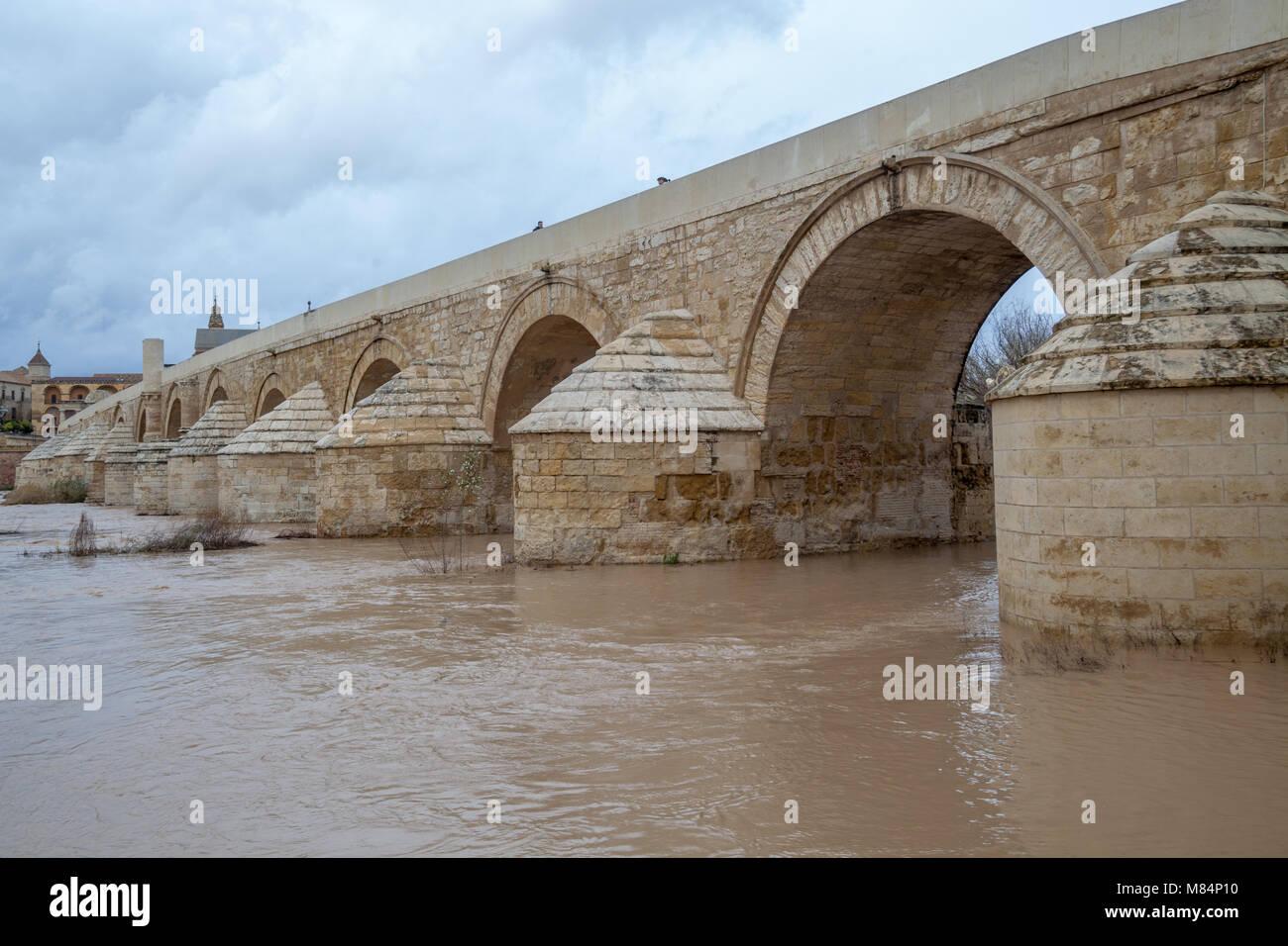 Voir Pont Romain De Cordoue Espagne Au Printemps Banque D