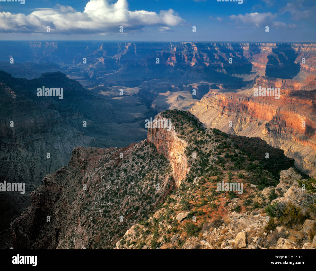 Point Sublime, le Parc National du Grand Canyon, Arizona Photo Stock