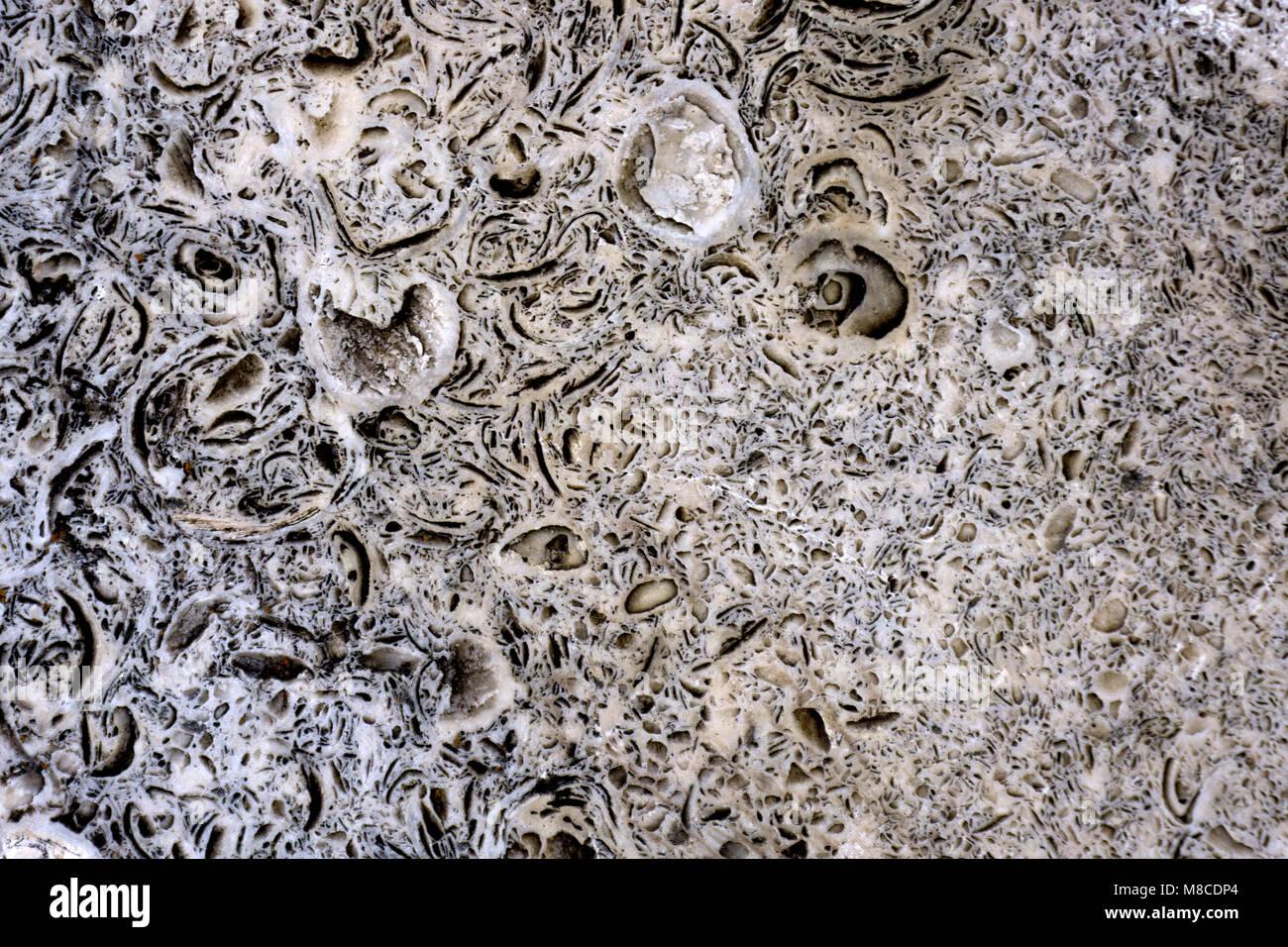 Les pierres décoratives. macro dendrite. Les matières premières la plaque. Photo Stock
