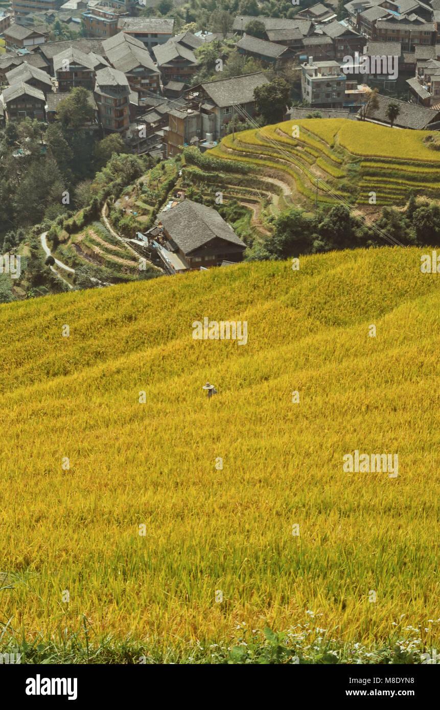 Longshen Pingan Chine rizières en terrasse Photo Stock