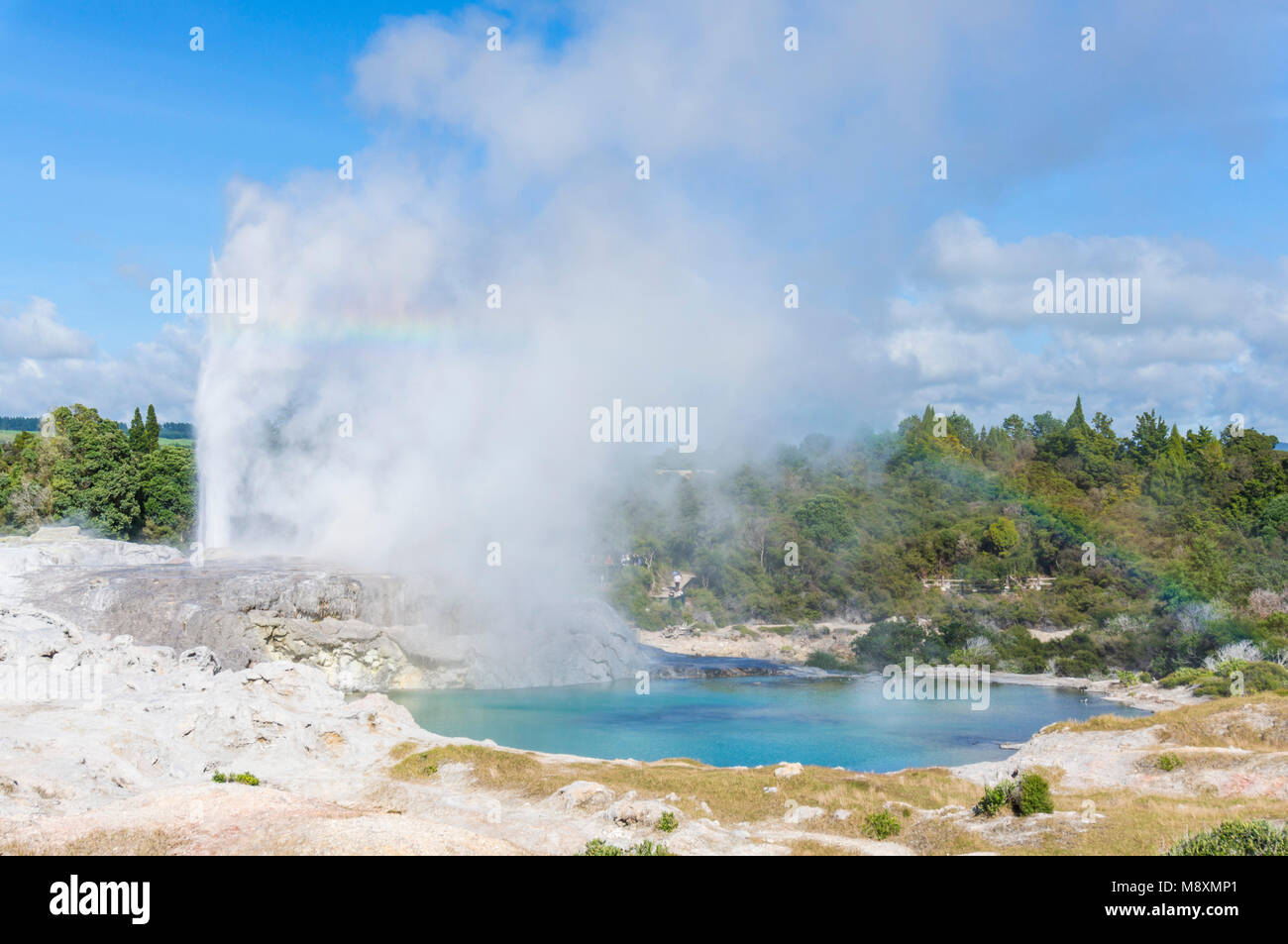 Nouvelle zélande Rotorua Nouvelle zélande Rotorua whakarewarewa geyser Pohutu geyser prince-de-Galles Photo Stock