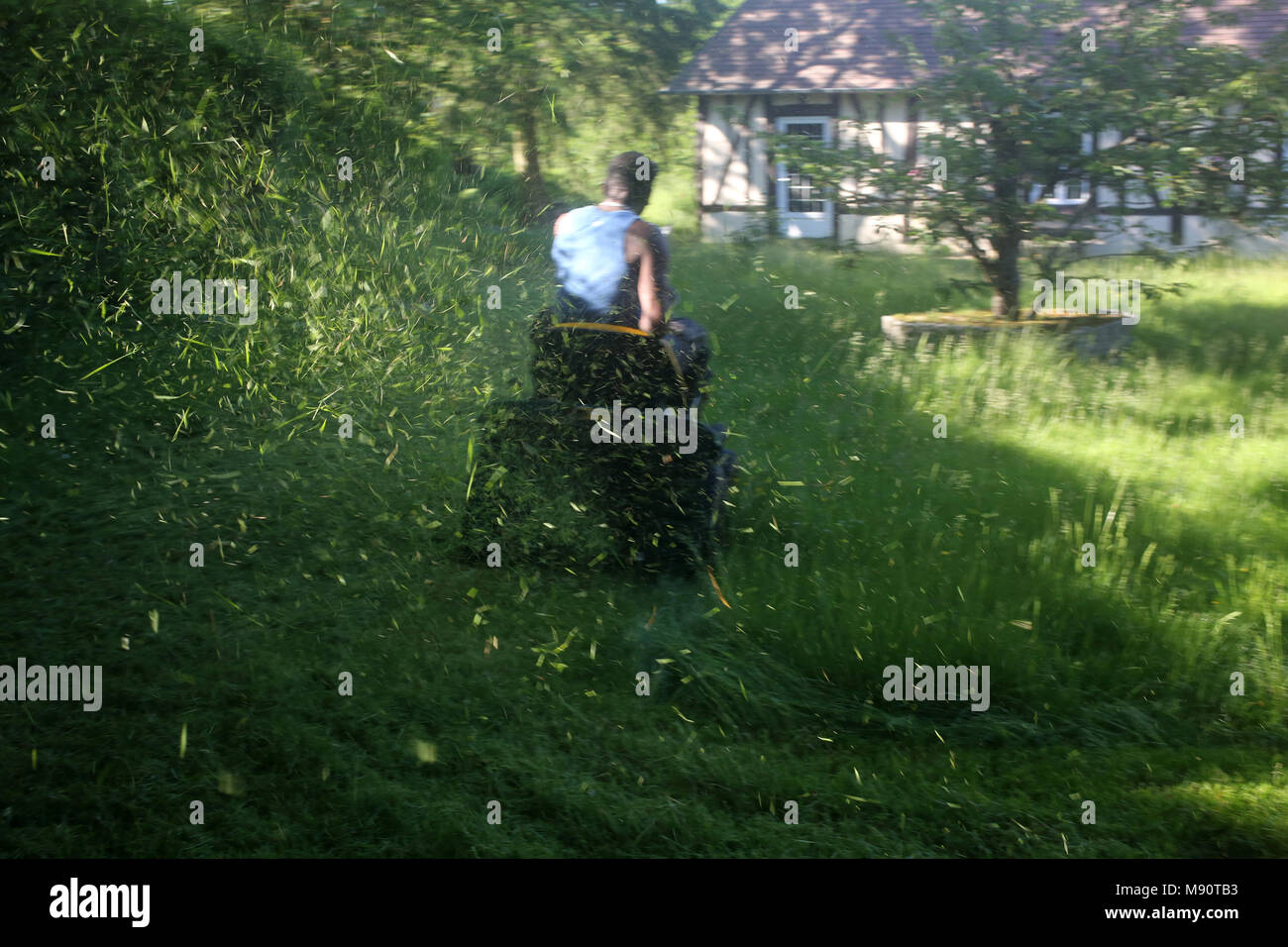 La tonte du gazon. Eure, France. Photo Stock