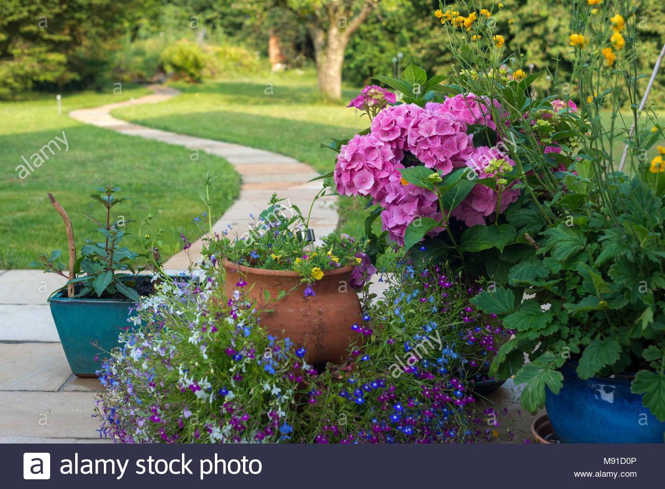 Un jardin patio avec des pots de fleurs à l\'ombre d\'un beau matin d ...