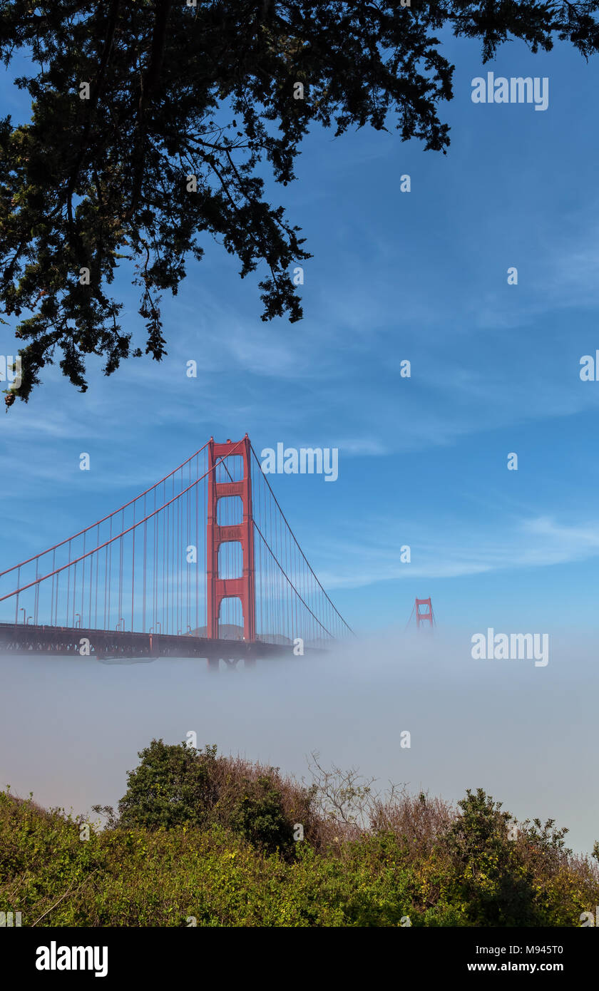 L'emblématique pont du Golden Gate, à faible brouillard sous le pont, sur un début de matinée de printemps, San Francisco, California, United States. Photo Stock