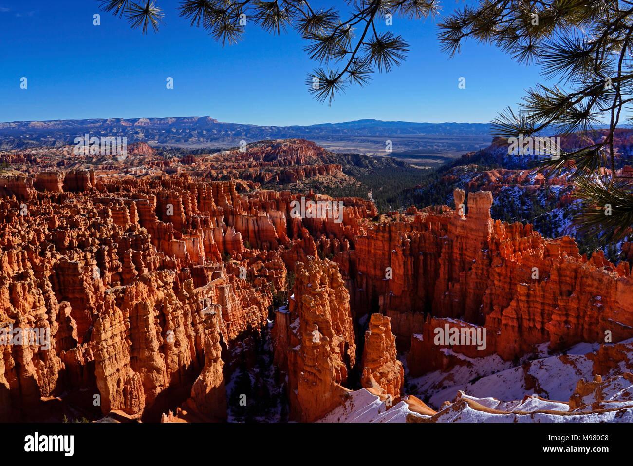 Le Parc National de Bryce Canyon dans l'Utah,hiver,Amérique du Nord Photo Stock