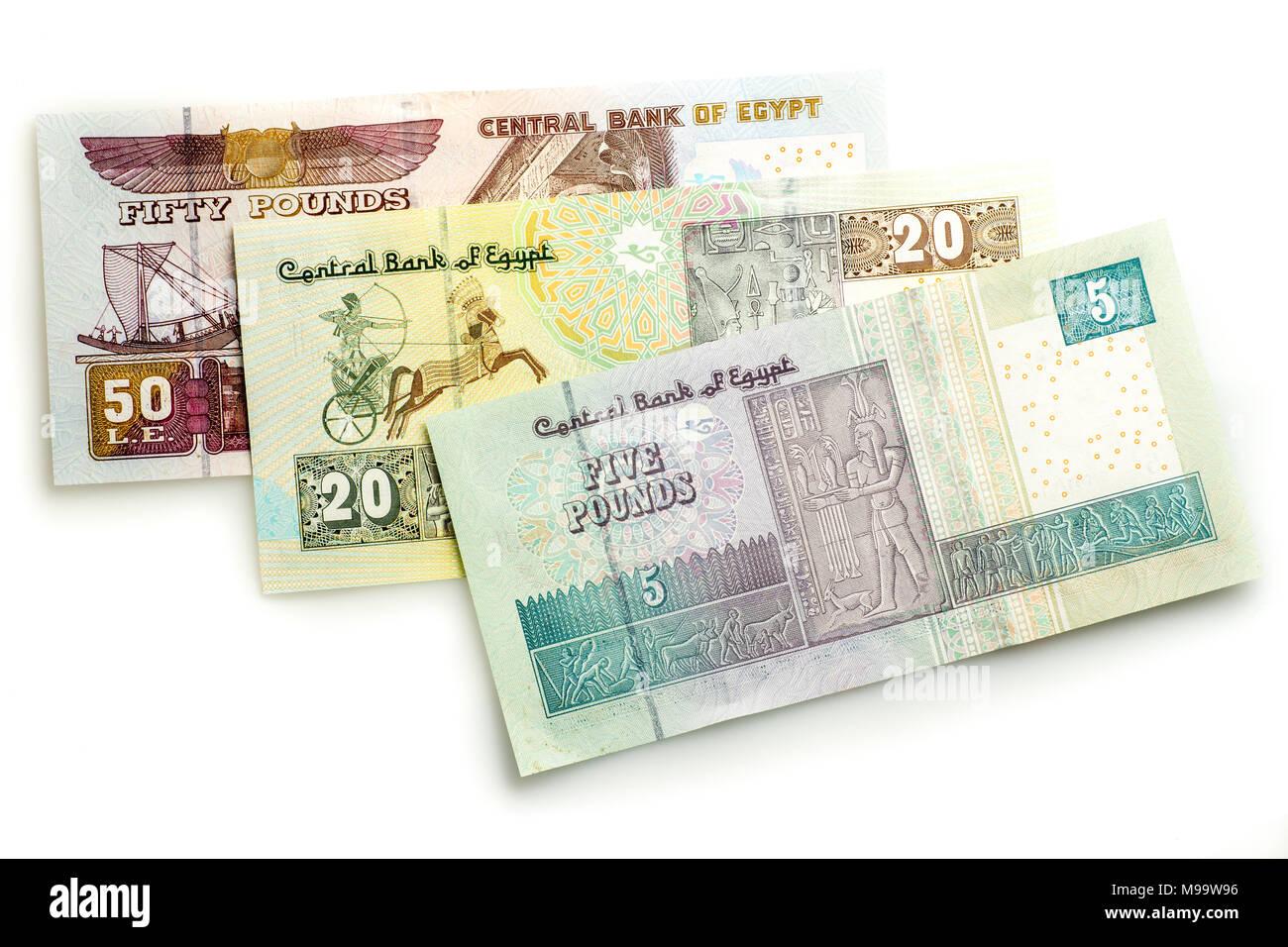 Livre Egyptienne Note Banque D Images Photo Stock