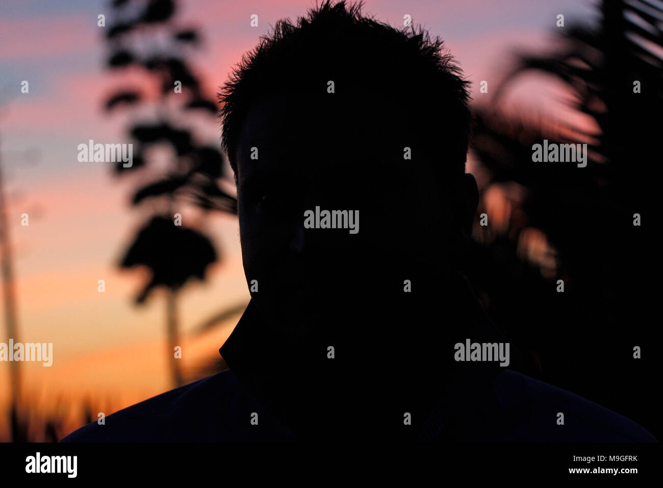 Ambiance coucher de soleil, de palmiers shadows Photo Stock