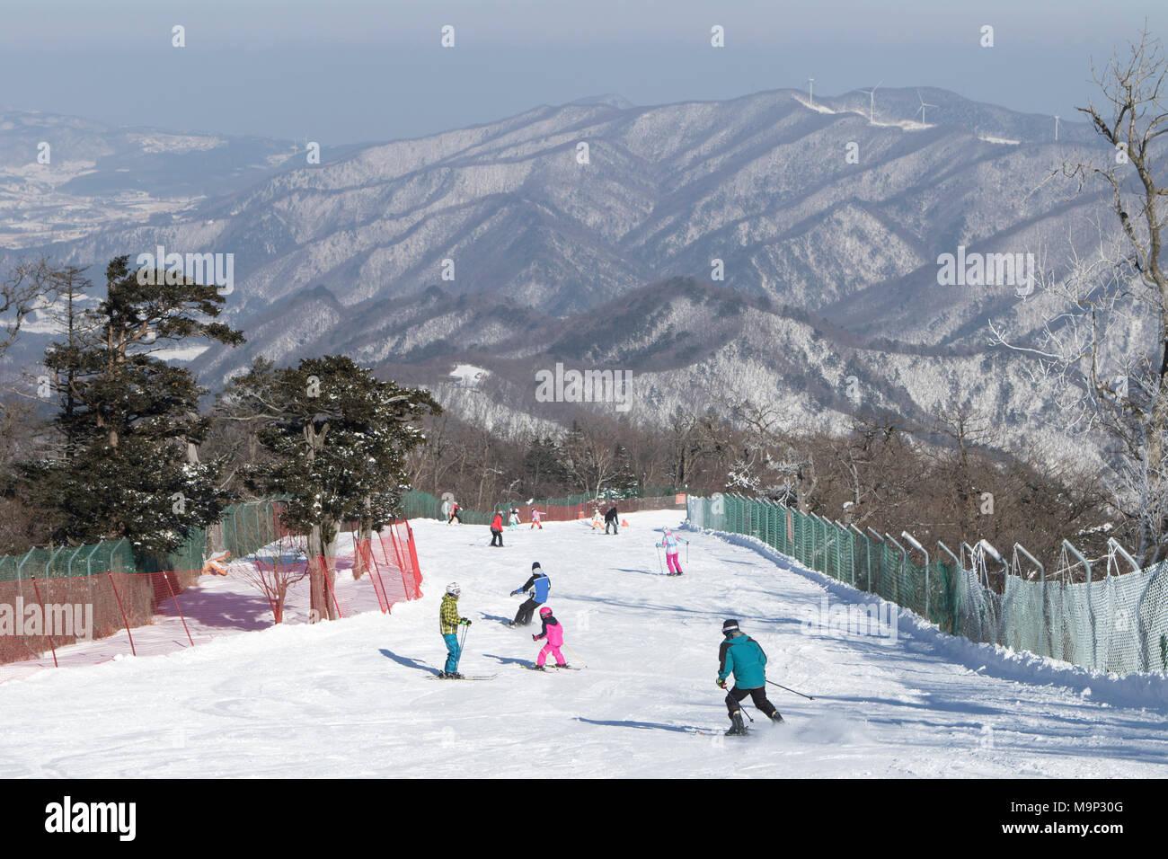 Un regard vers le bas le Rainbow Paradise fonctionner à Yongpyong resort, qui est la descente olympique pour les Jeux d'hiver de 2018. Yongpyong (Dragon Valley) Ski Resort est une station de ski en Corée du Sud, situé dans la région de Daegwallyeong-myeon, Pyeongchang, Gangwon-do. C'est la plus grande station de ski et snowboard en Corée. Technique de Yongpyong accueillera les épreuves de ski alpin pour les Jeux olympiques et paralympiques d'hiver de 2018 à Pyeongchang. Certaines scènes de la Korean Broadcasting System 2002 drama Winter Sonata ont été tournées dans la station. Photo Stock
