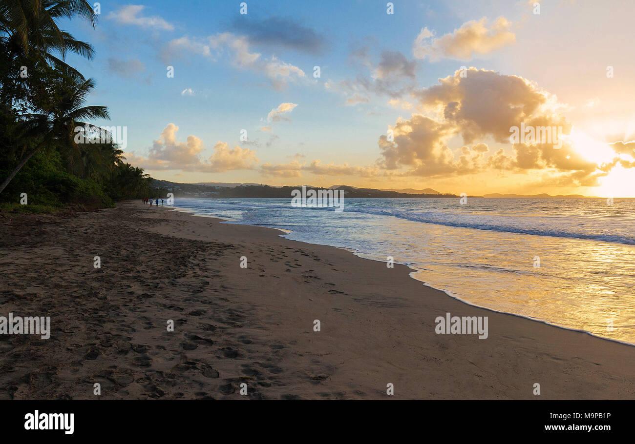 Le coucher du soleil sur la Martinique, French West Indies. Photo Stock