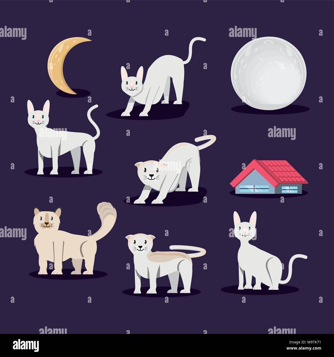 Groupe de chats vecteur caractères illustration design Illustration de Vecteur