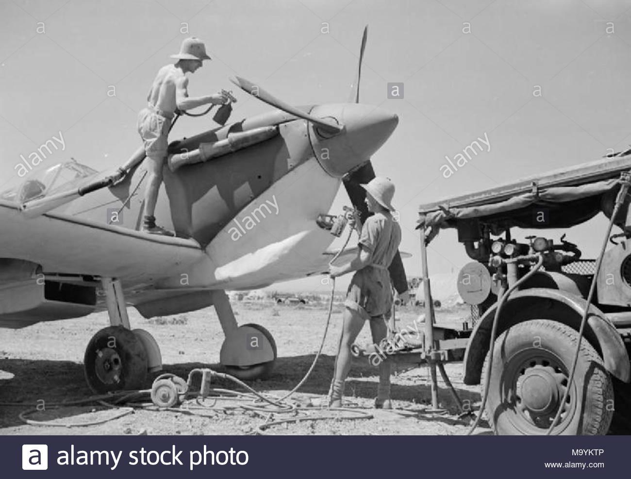 1939 1943 utilisation daviateurs pistolets recamouflage réparé un supermarine spitfire mark v à n 144 unité de maintenance maison blanche lalgérie