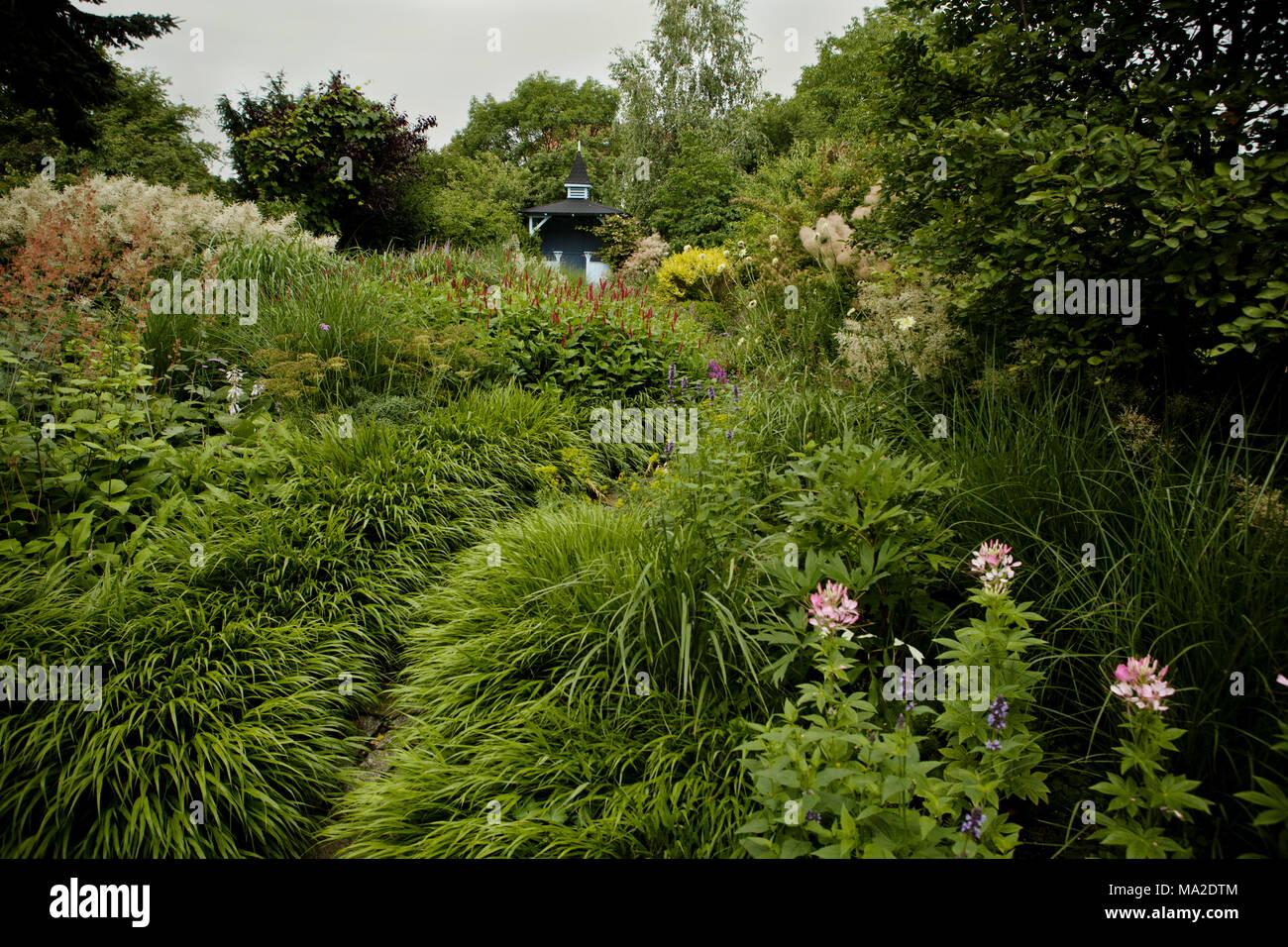 Les Graminees Vivaces Jardin Mer Nous Banque D Images Photo Stock