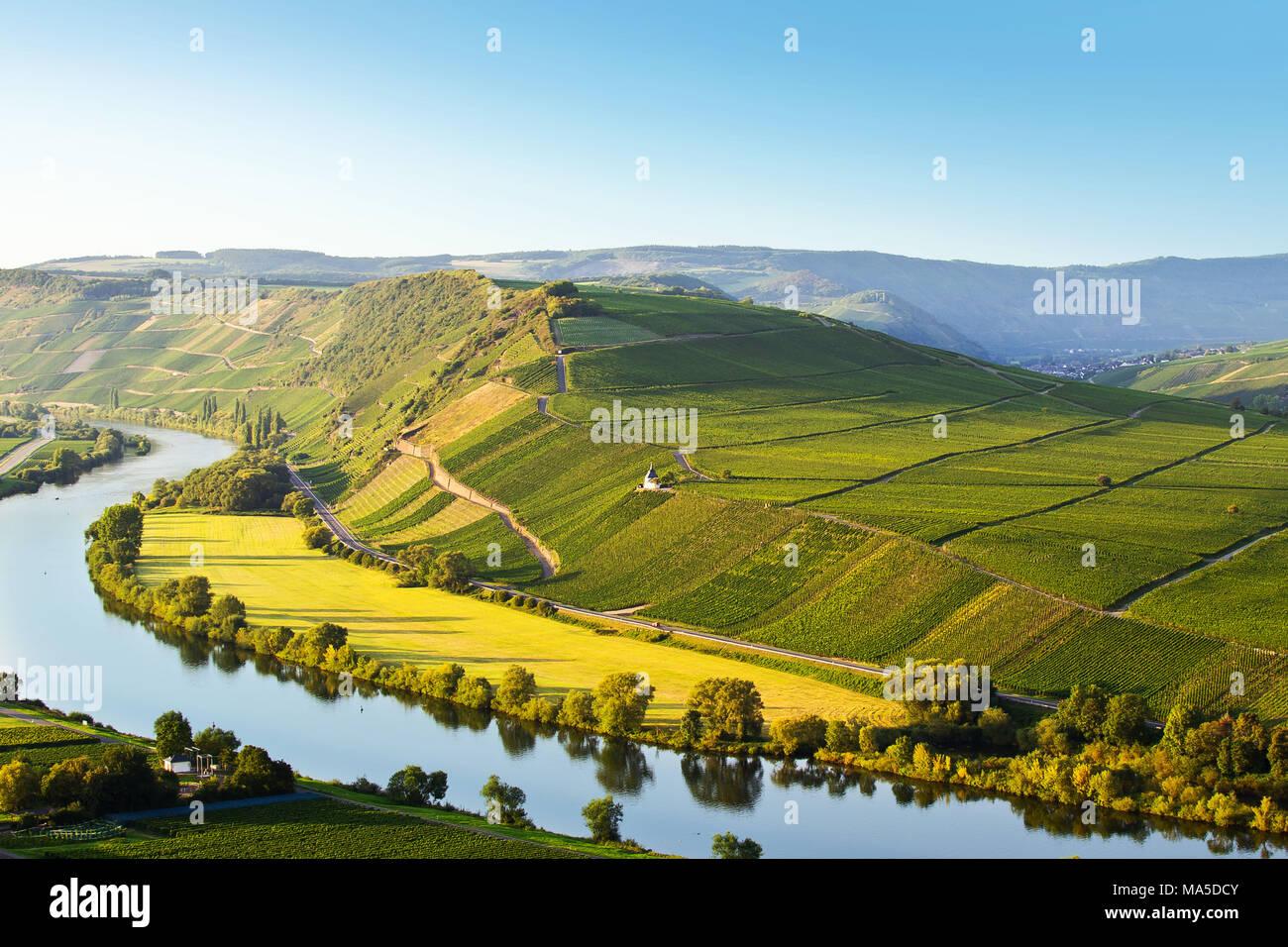 Vue de la Moselle et les vignes derrière, dans l'été, à proximité Bank 2 avec un ciel sans nuages. Photo Stock