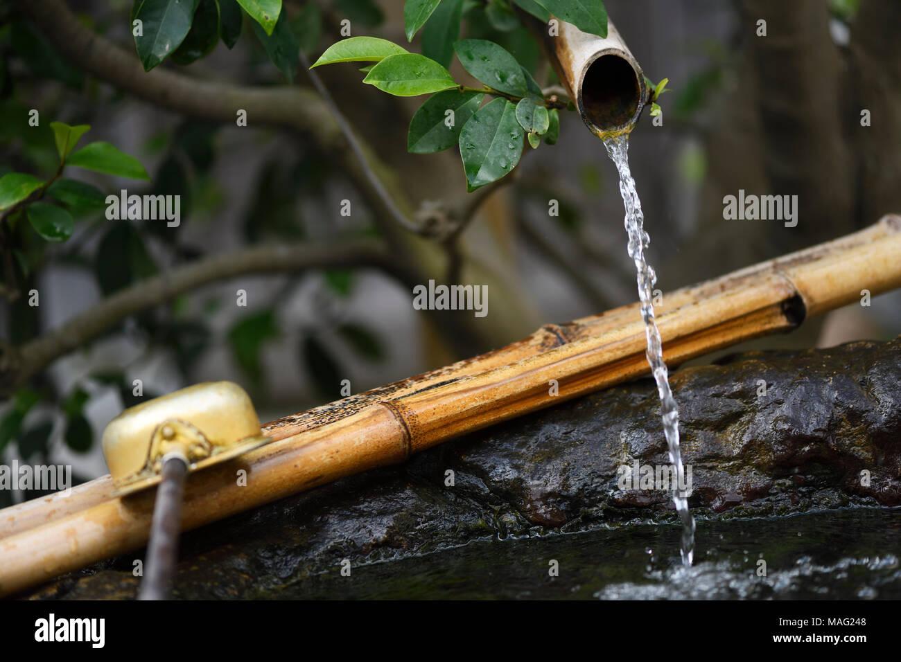 Chozubachi, rituel de purification de l'eau bassin avec un bambou mordillements et d'une ourse, illustrant la philosophie de l'esthétique japonaise Wabi-Sabi qui trouve la beauté dans le NAT Photo Stock
