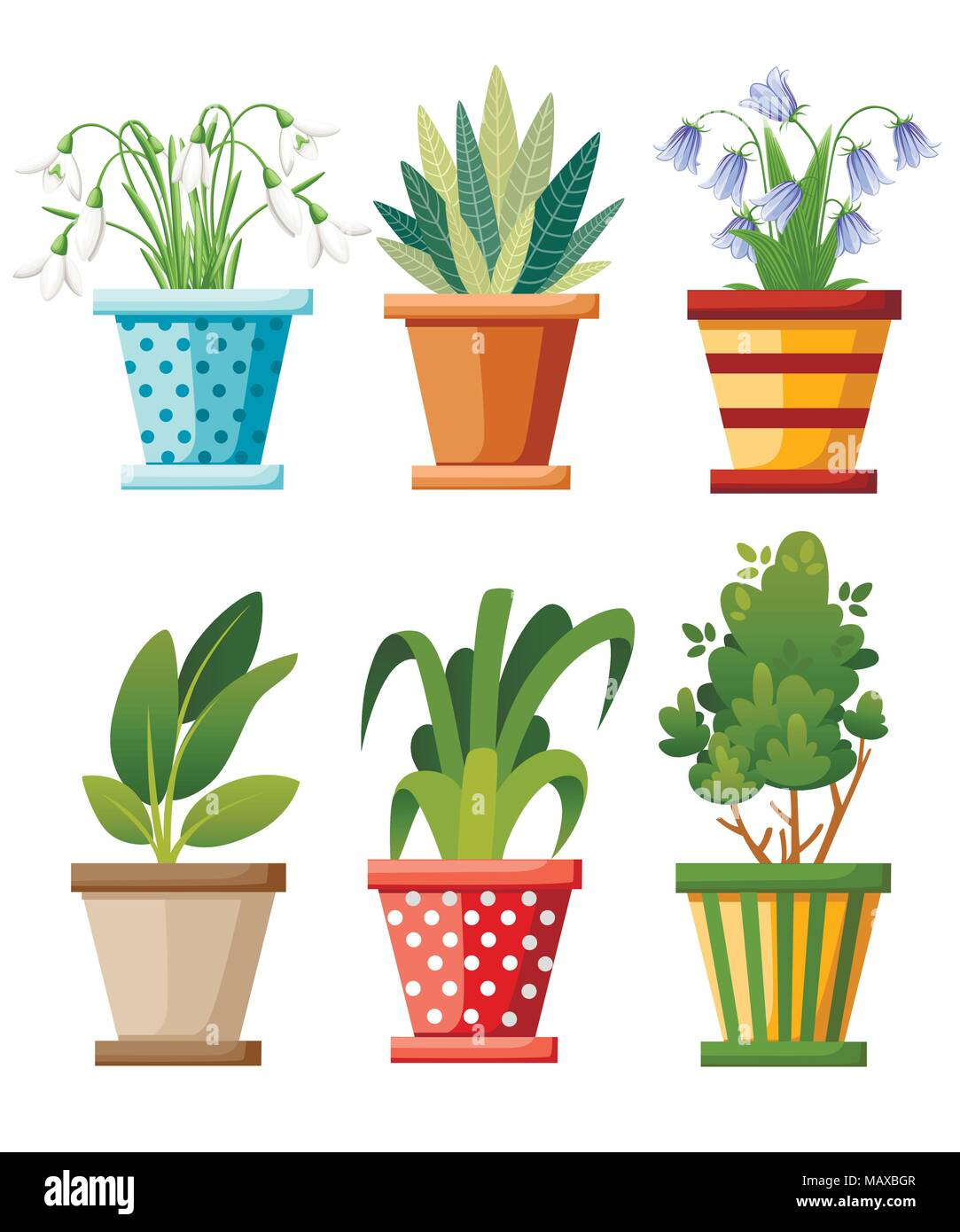 Paysage Interieur Et Exterieur Jardin De Plantes En Pots