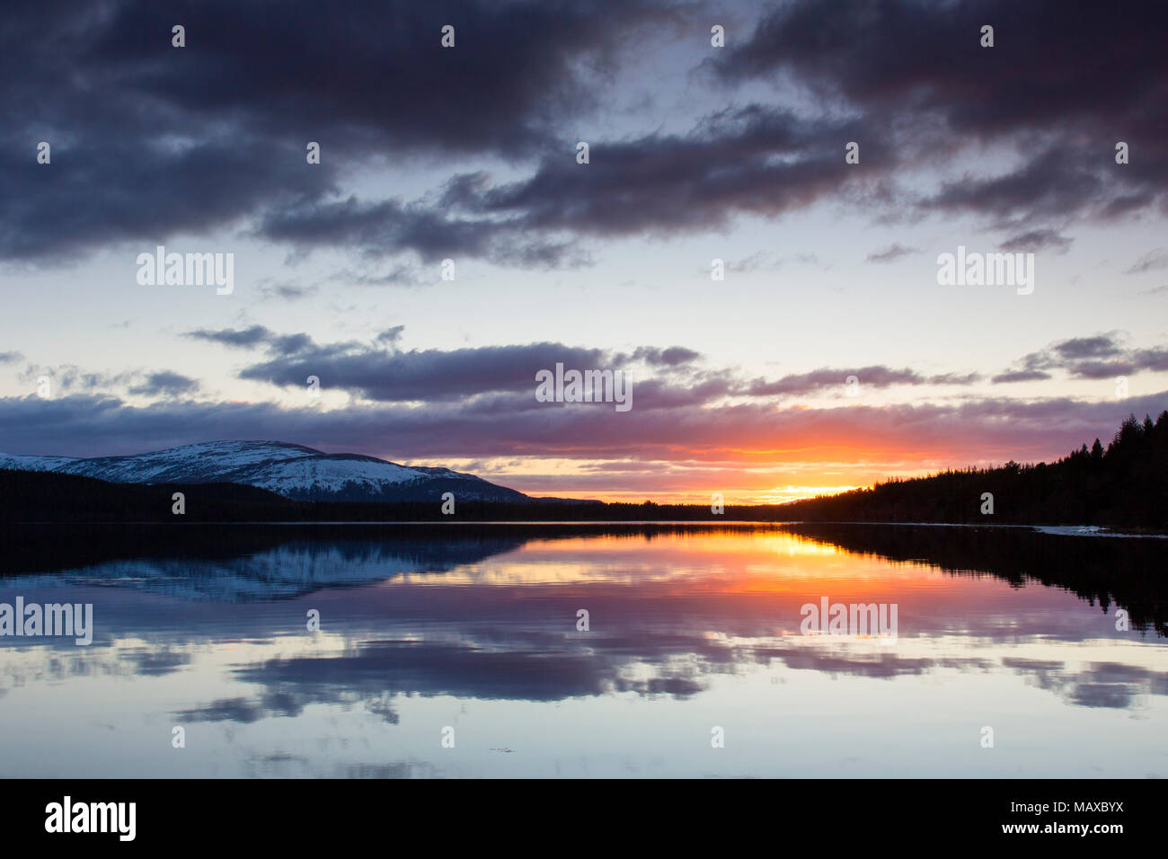 Le Loch Morlich au coucher du soleil en hiver, le Parc National de Cairngorms, Badenoch et Strathspey, Highland, Scotland, UK Photo Stock