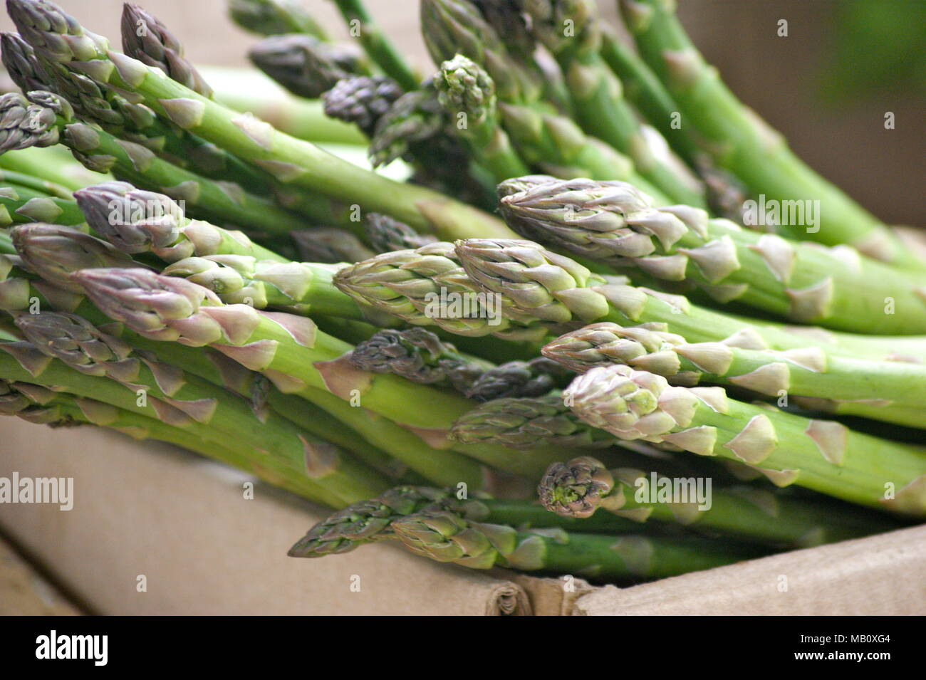 D'asperge à Thimphu, Bhoutan marché Photo Stock