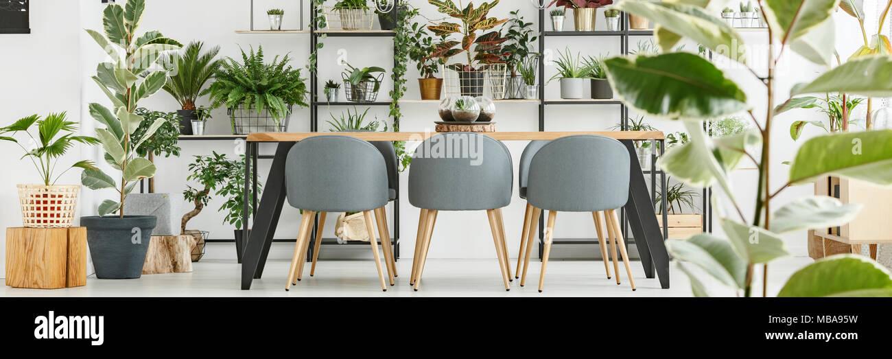 L\'intérieur blanc salle à manger avec table en bois, chaises gris et ...