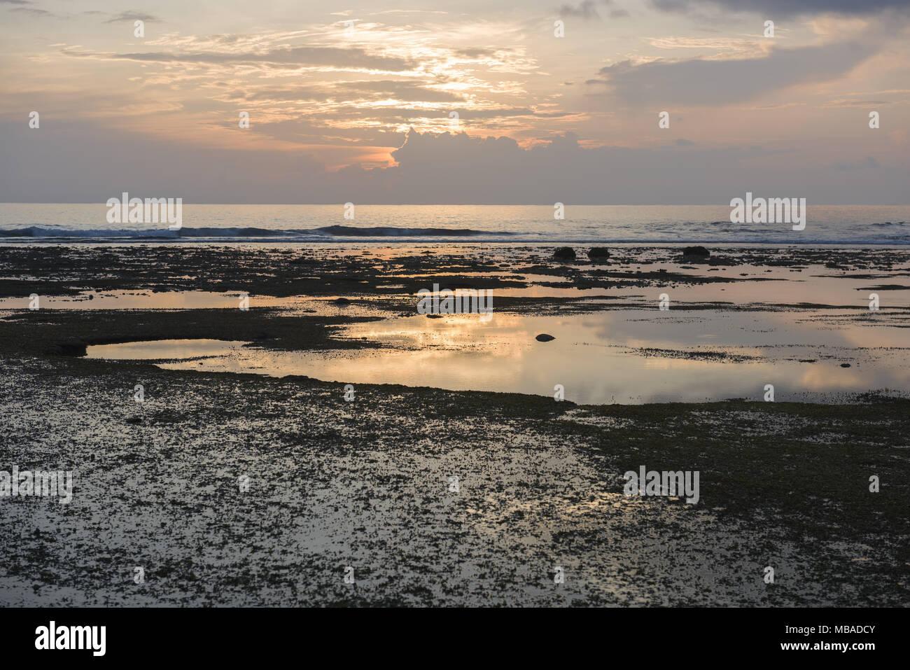 Zone littorale à marée basse au coucher du soleil Photo Stock