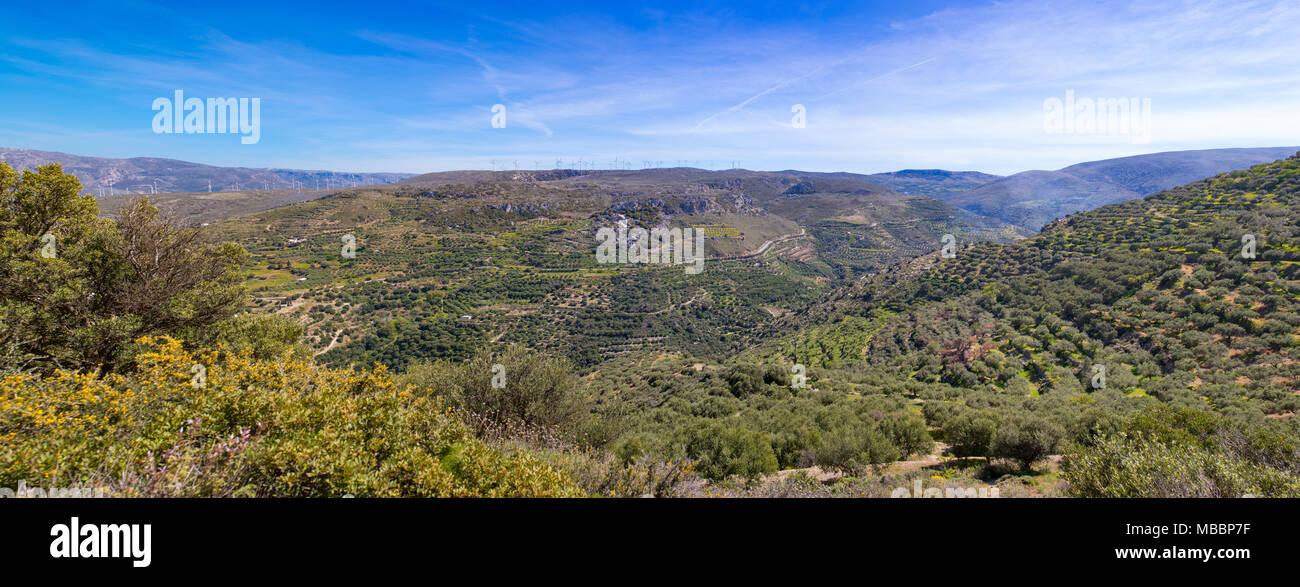 Paysage de Crète, de vertes collines, montagnes, ciel bleu, d'oliviers et de broussailles. Scenic, vue panoramique, grande brochure photo. Photo Stock