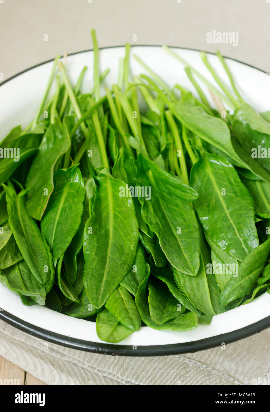 Des feuilles fraîches de l'oseille dans un bol d'eau. Style rustique. Photo Stock