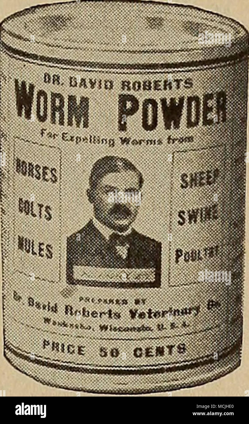 Manure Worms Photos & Manure Worms Images - Alamy