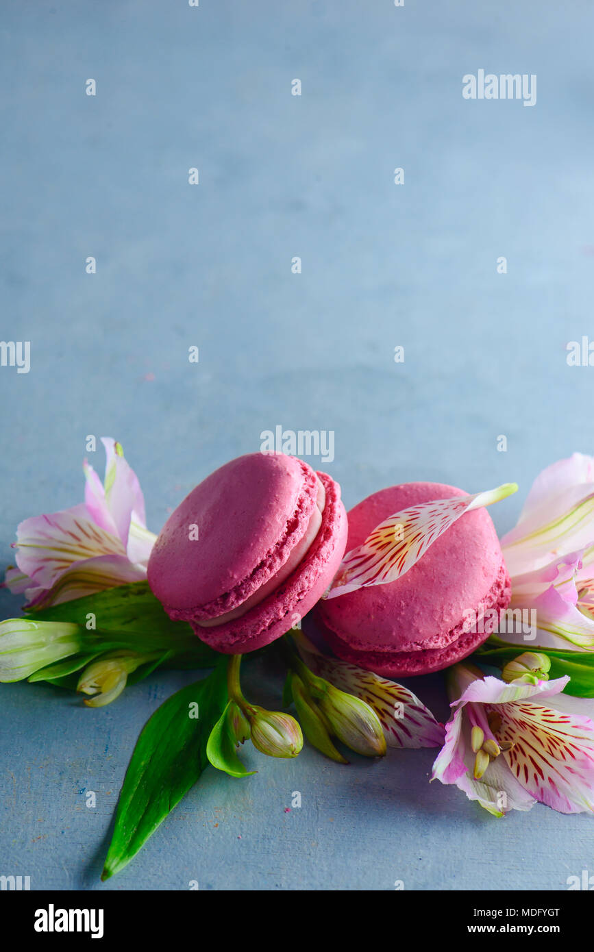 Macarons rose décorée de fleurs d'alstroemeria rose et blanc. Dessert Français romantique sur fond de pierre avec l'exemplaire de l'espace. Photo Stock