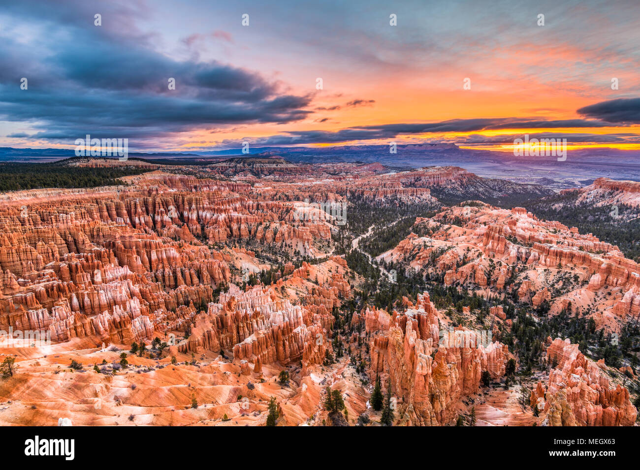 Bryce Canyon National Park, Utah, USA à l'aube. Photo Stock