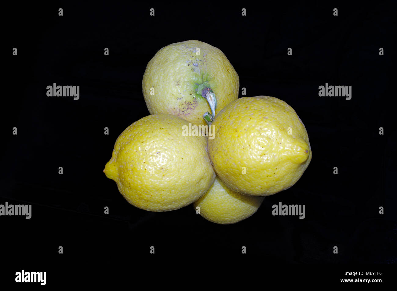 La grappe du citron Photo Stock