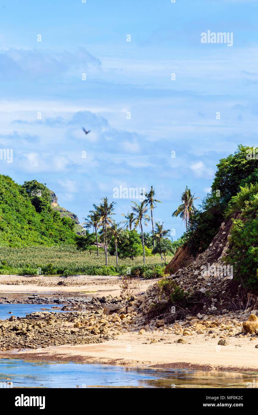 L'Indonésie, Lombok, le littoral, la plage Photo Stock