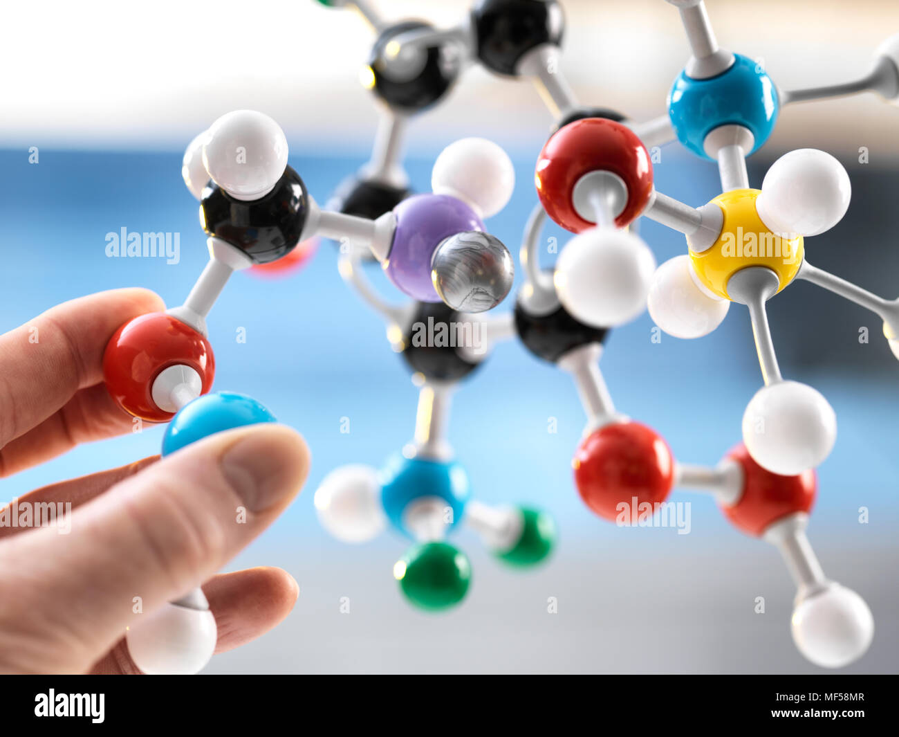 Scientist holding un modèle moléculaire Photo Stock