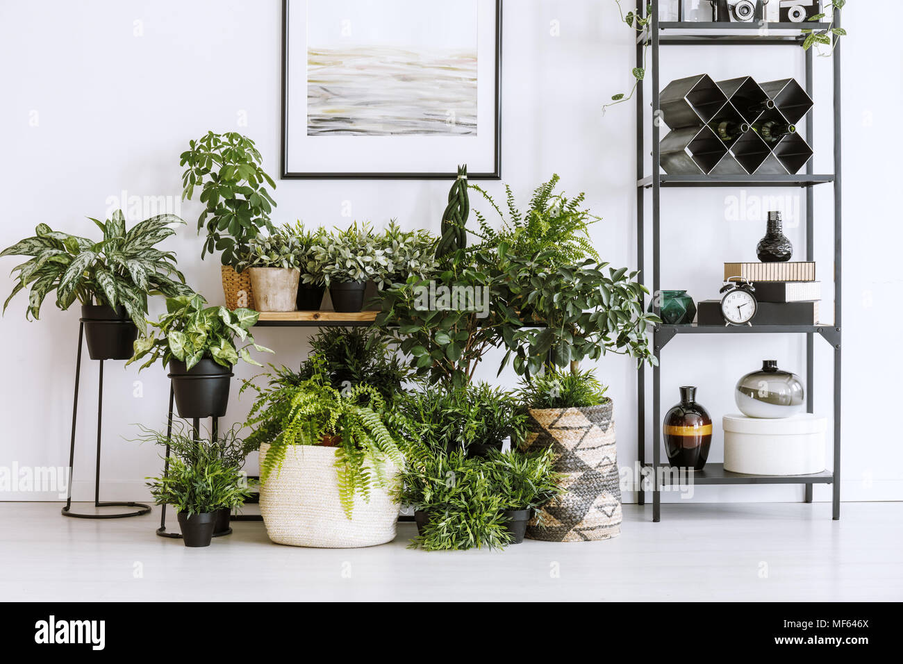 Etagere Pour Plantes Interieures jardinage et design photos & jardinage et design images - alamy