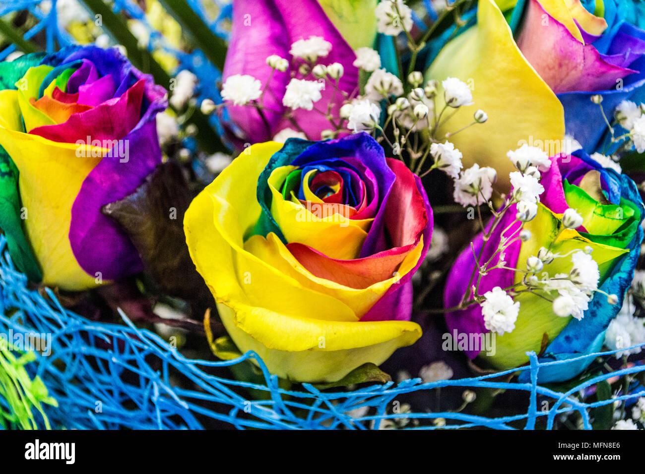 Dans Un Bouquet De Roses Multicolores Banque D Images Photo Stock