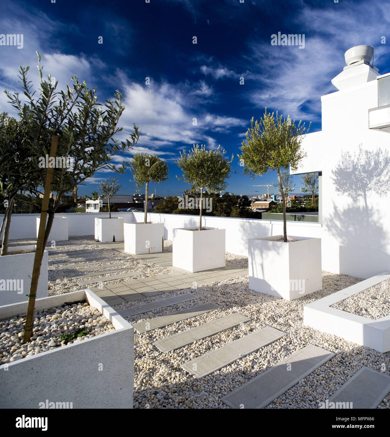 toit moderne jardin avec arbres en pots en pierre blanche banque d 39 images photo stock. Black Bedroom Furniture Sets. Home Design Ideas