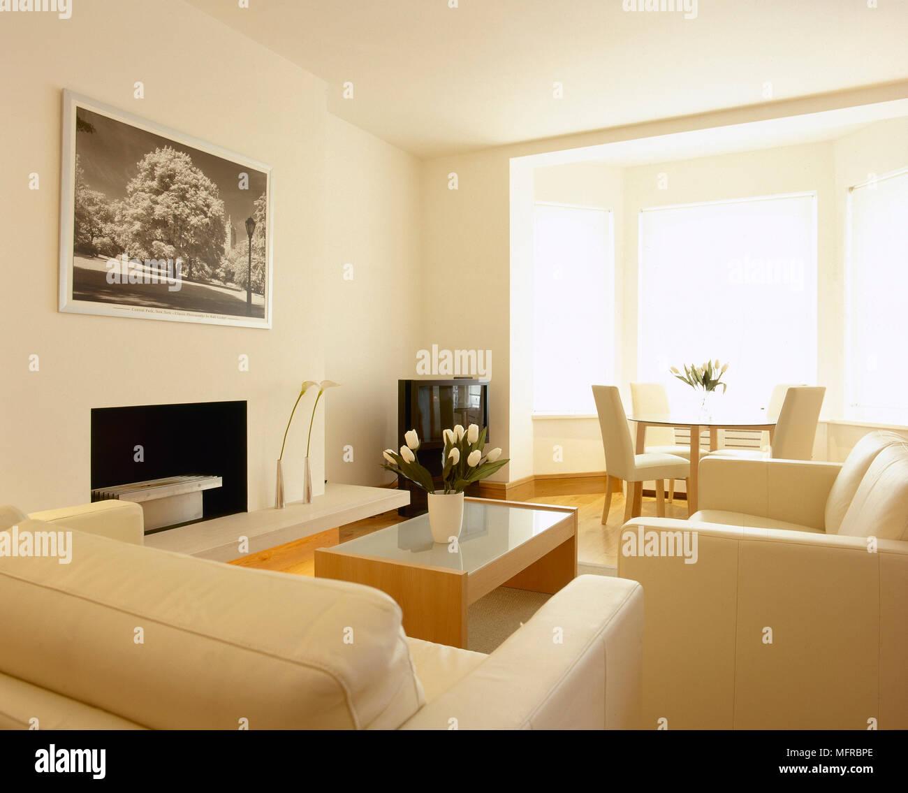 salon et salle manger avec canap s table et chaises. Black Bedroom Furniture Sets. Home Design Ideas