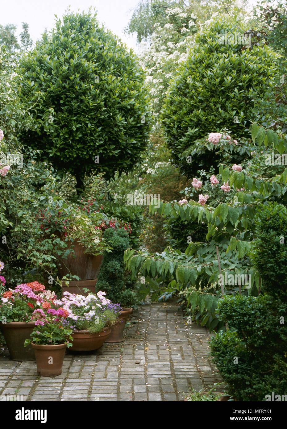 Detail Jardin Patio Pave Salon Pots De Terre Cuite Pavage
