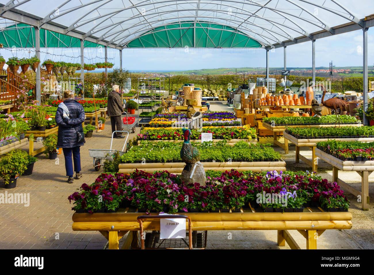 Un jardin de plantes, l écran du centre de pots et accessoires de jardin f401f56d422d