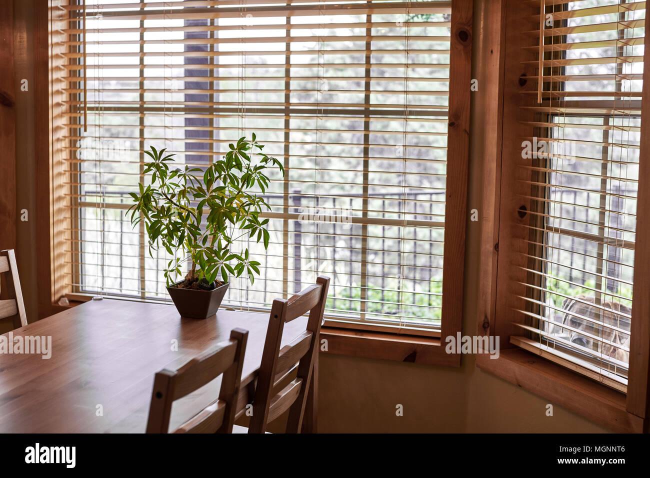 Une table et chaises de cuisine en bois près d'une fenêtre avec une plante en pot et un chien à la recherche dans la fenêtre latérale Photo Stock