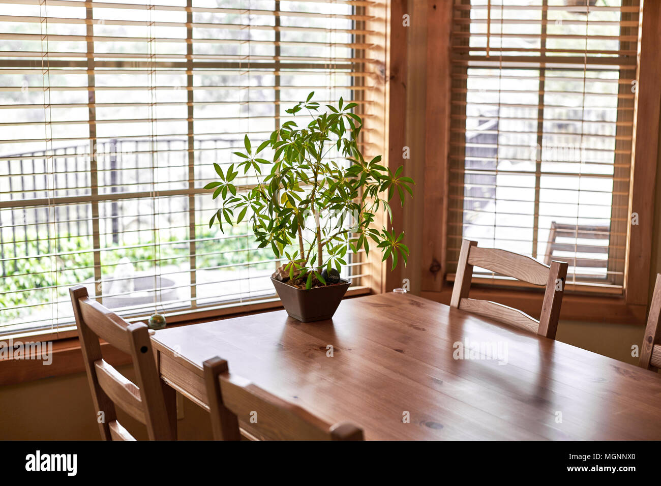 Une table et chaises en bois avec des fenêtres tout autour et une plante en pot sur la table Photo Stock