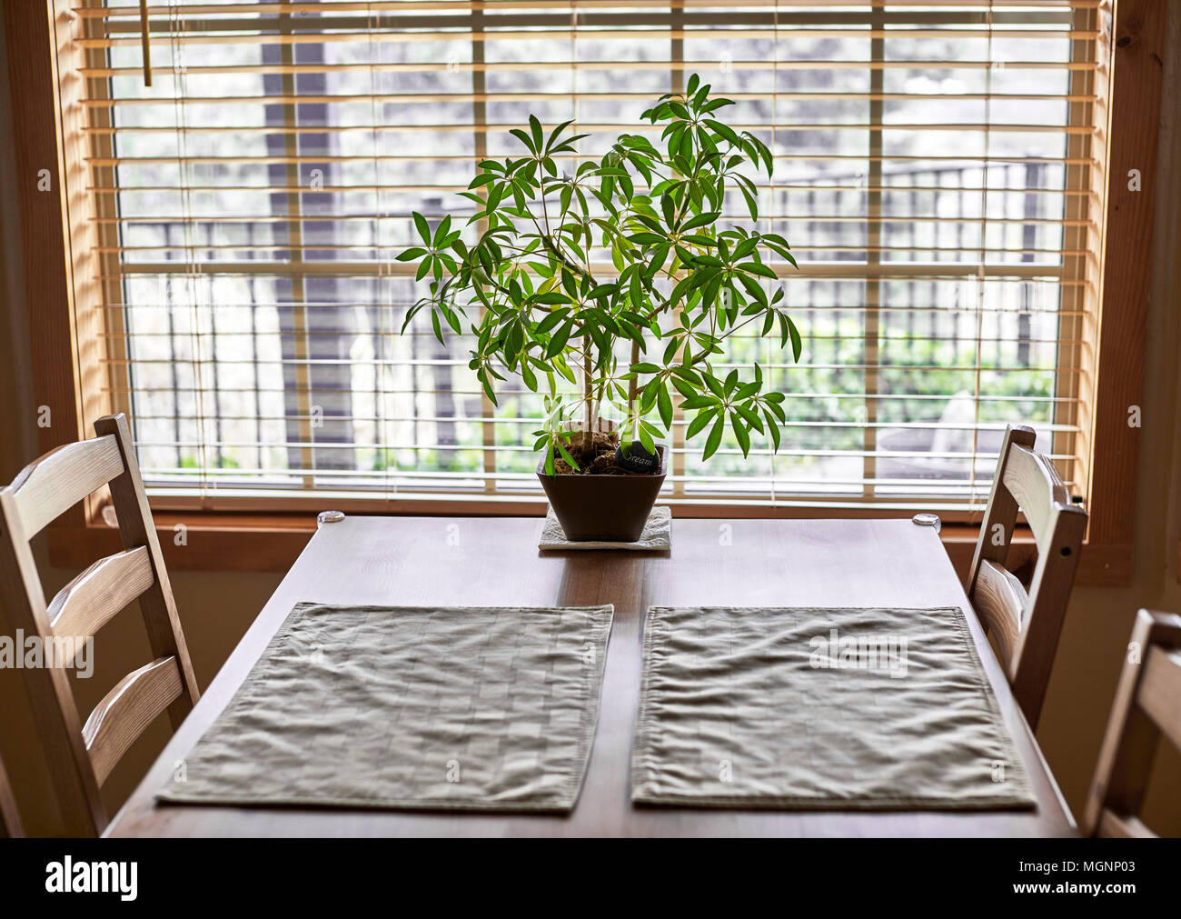 Une table et chaises de cuisine en bois près d'une fenêtre avec une plante en pot et napperons Photo Stock