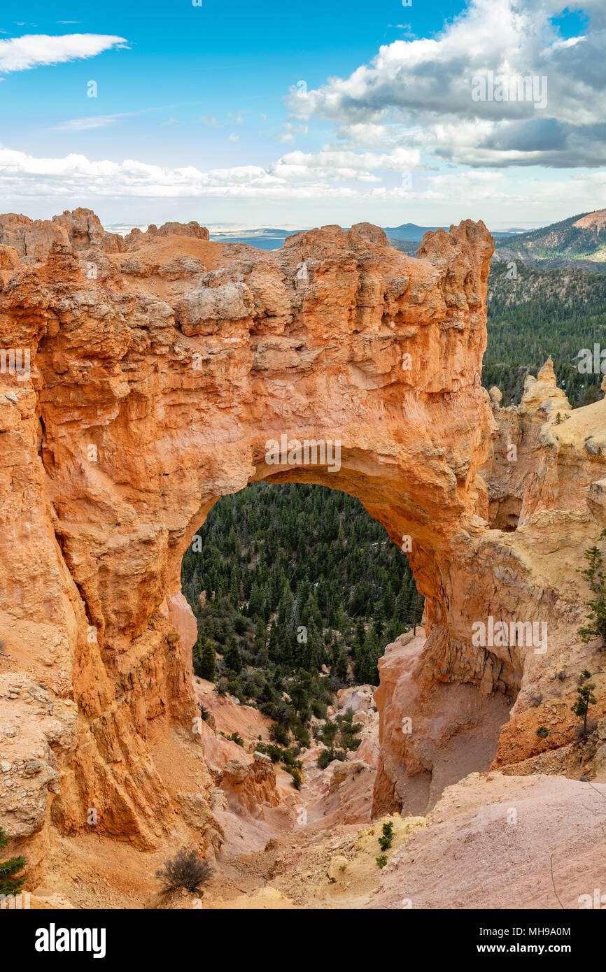 Bryce Canyon National Park, Utah, USA au natural bridge. Photo Stock