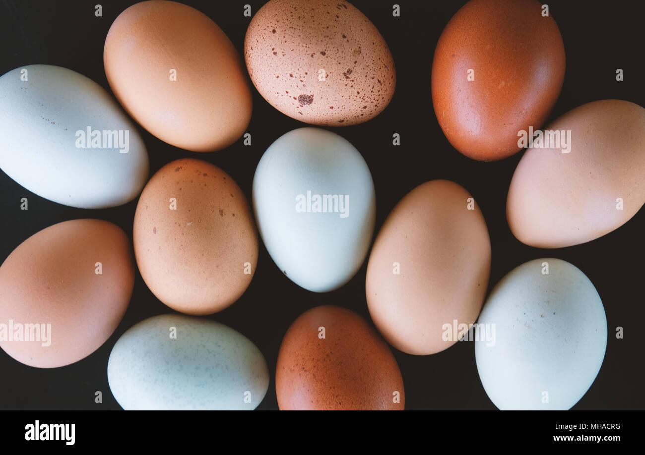 Mise à plat de la collection de cage de poulet de la ferme des oeufs dans le détail. Montre différentes de multi couleur œuf de vie simple. Photo Stock