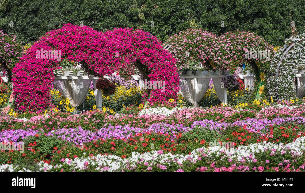 Décor De Jardin En Forme De Coeur Au Miracle Gardens à Dubaï