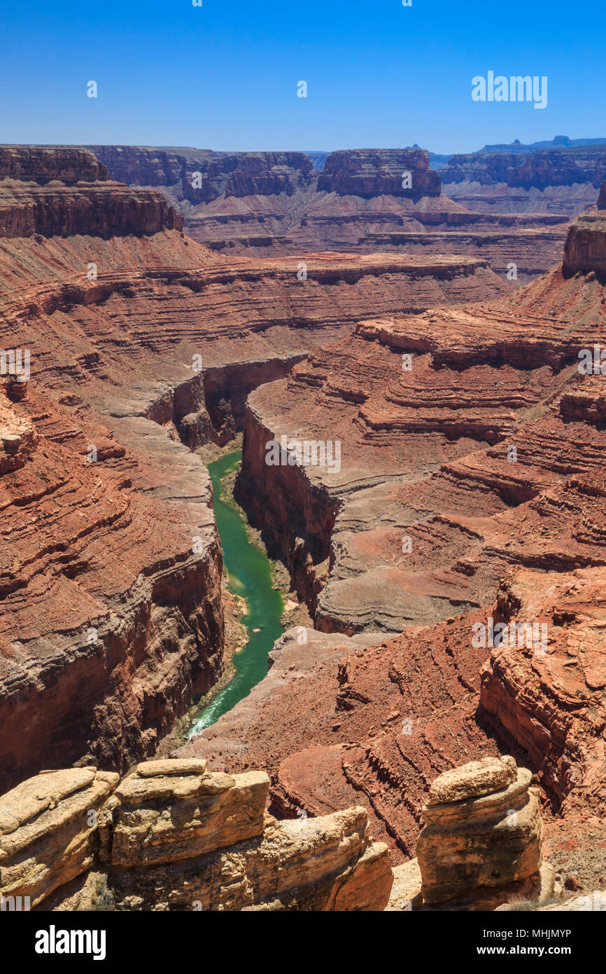 En canyon de la rivière Colorado, dans la région de canyon ferme buck le parc national du Grand Canyon, Arizona Photo Stock