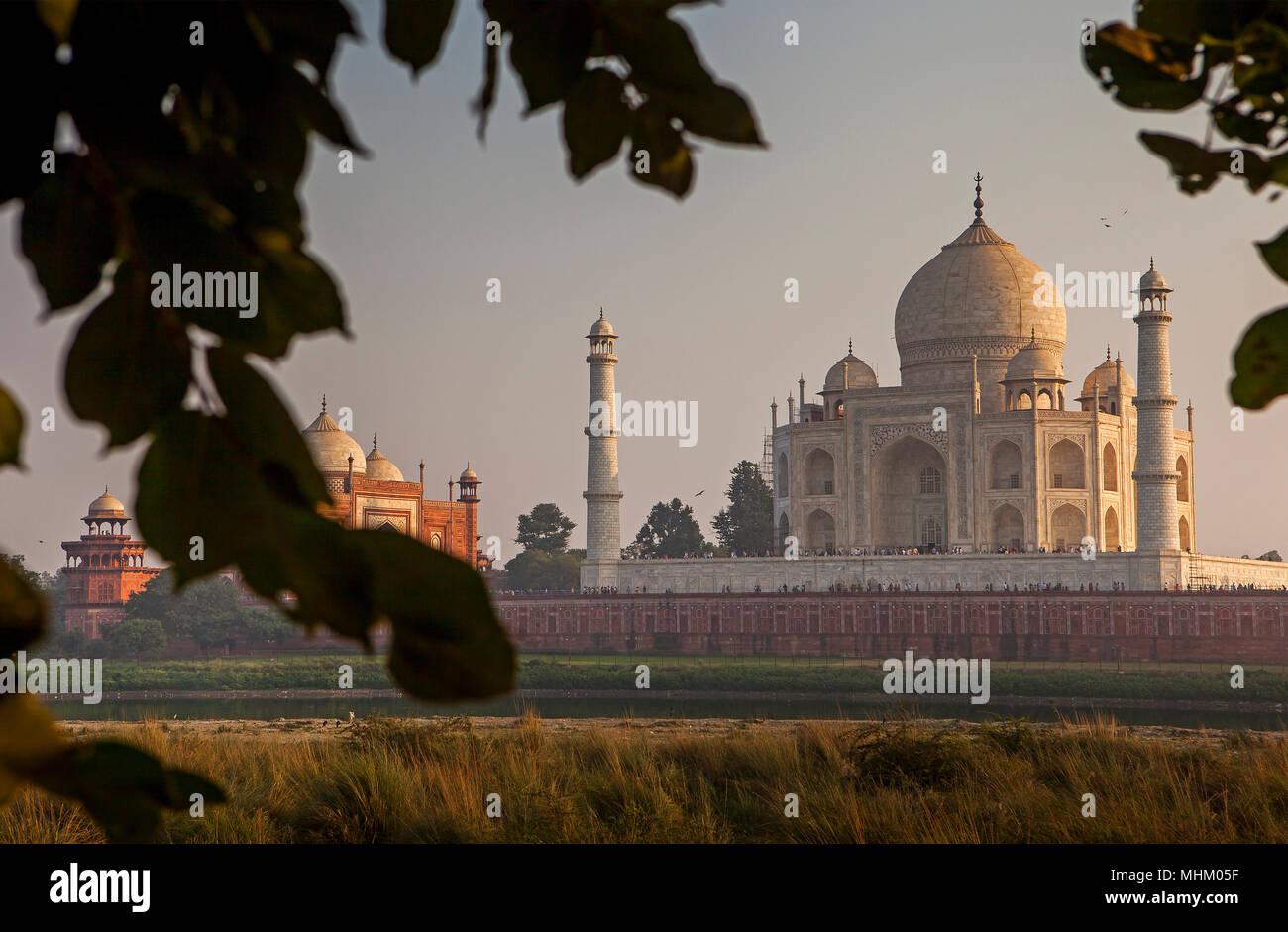 Ossature bois, encadrée, cadre, Taj Mahal, à partir de la rivière Yamuna, UNESCO World Heritage Site, Agra, Uttar Pradesh, Inde Photo Stock