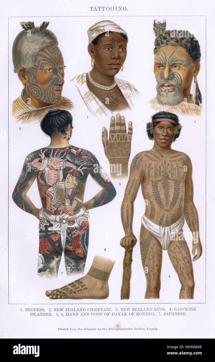 Styles de tatouage de partout dans le monde: 1. Femme de l'Afrique de l'Ouest 2. Les Maoris de Nouvelle-Zélande Chieftain 3. Les Maoris de Nouvelle-Zélande Le Roi 4. Caroline Torres 5/6. Les tatouages des mains et des pieds d'un dayak de Bornéo 7. Full-body tattoo japonais. Date: vers 1895 Photo Stock