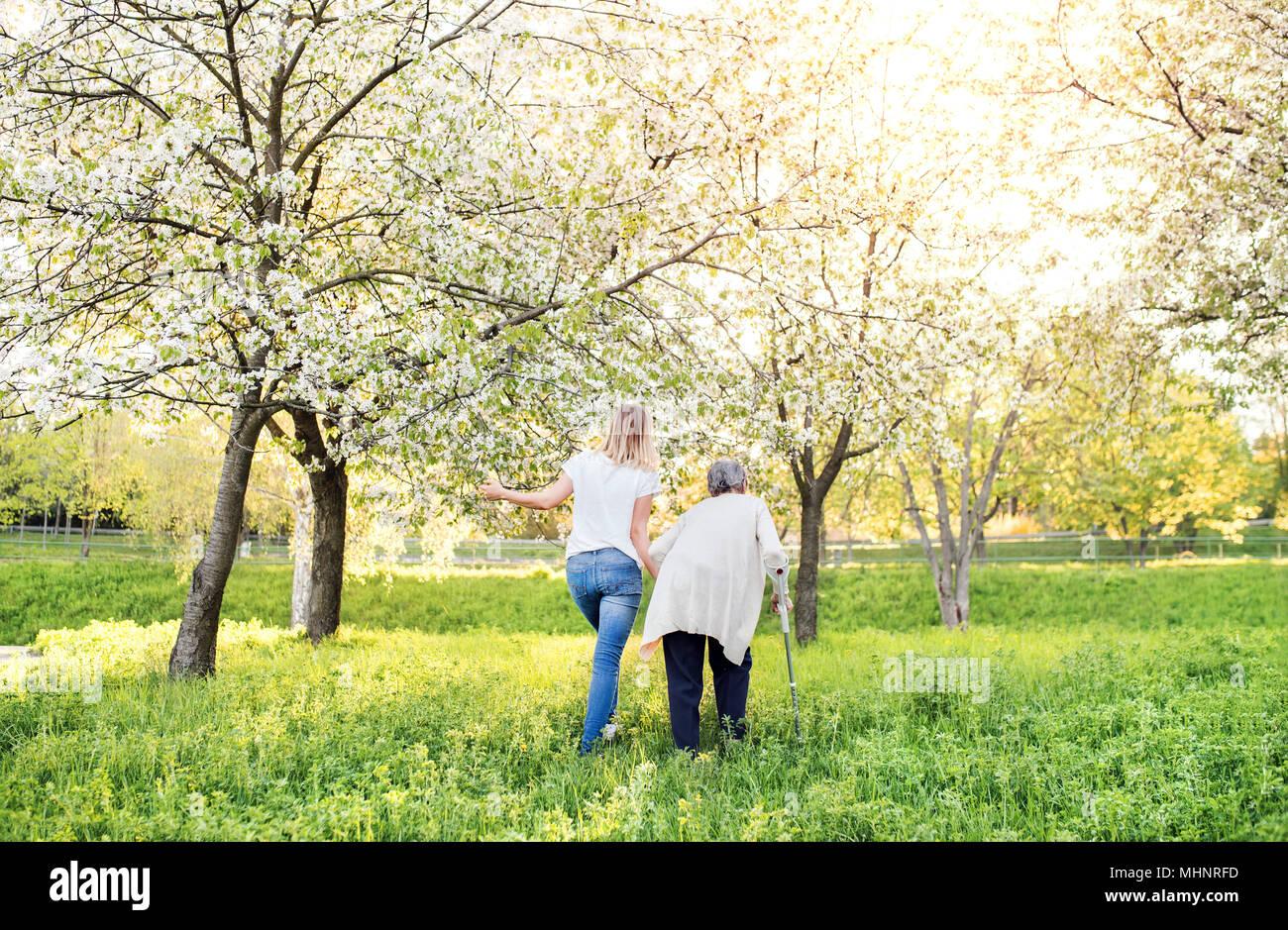 Grand-mère âgée avec béquille et petite-fille au printemps la nature. Photo Stock
