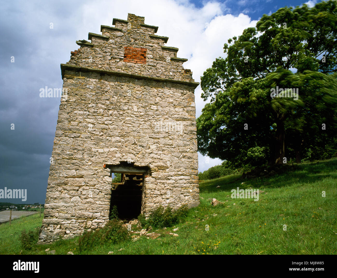 Pigeonnier ferme Gop, Trelawnyd, Flintshire, au nord du Pays de Galles, Royaume-Uni. 17ème siècle en ruine grand pigeonnier carré fabriqué à partir de calcaire. Classée monument historique Banque D'Images