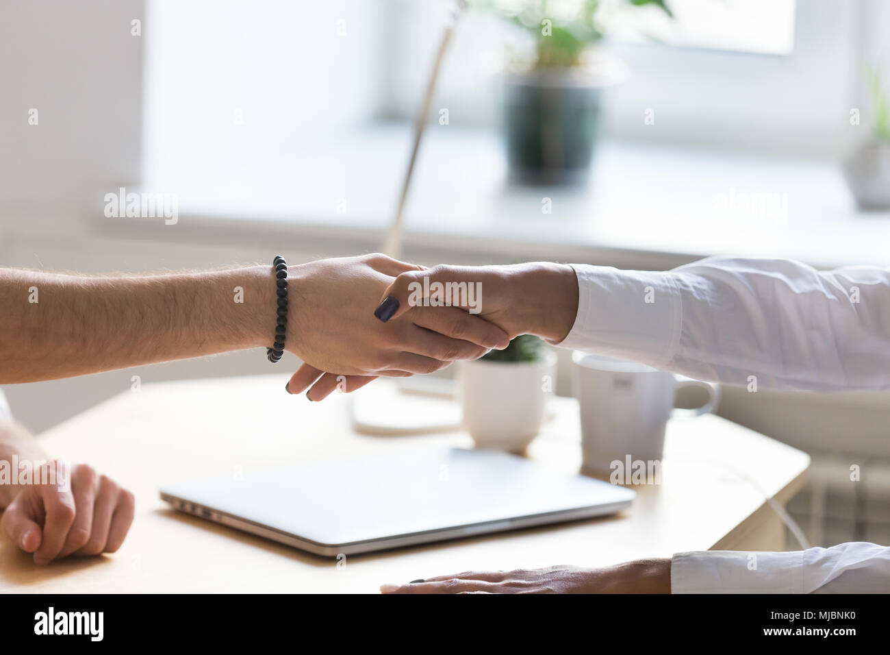 Businessman and businesswoman handshaking multiraciale à la réunion Photo Stock